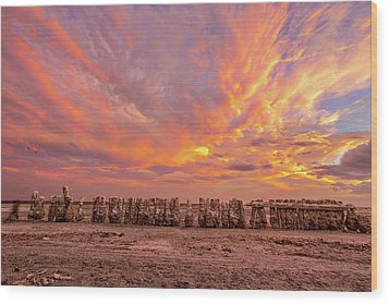 Wood Print featuring the photograph Ducks In A  Row by Peter Tellone