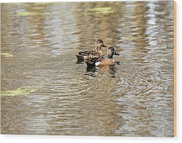 Wood Print featuring the photograph Ducks Together by Teresa Blanton