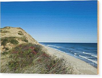 Dune Cliffs And Beach Wood Print by John Greim