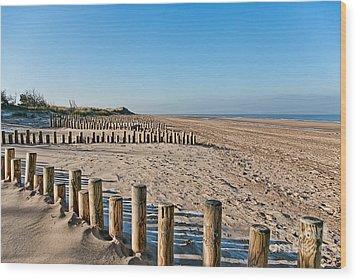 Dune Conservation Holme Dunes North Norfolk Uk Wood Print by John Edwards