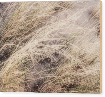 Dune Grass Nature Photography Wood Print by Ann Powell