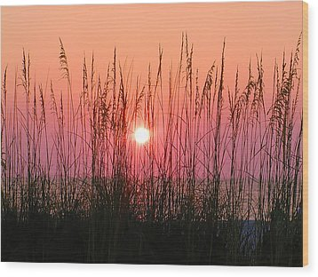 Dune Grass Sunset Wood Print by Bill Cannon