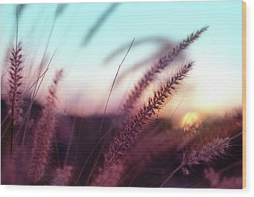 Wood Print featuring the photograph Dune Scape by Laura Fasulo