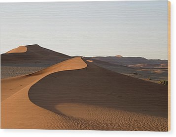 Wood Print featuring the photograph Dune Shapes by Riana Van Staden