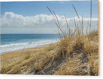 Dunes At Plum Island Wood Print