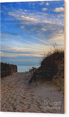 Dunes On The Cape Wood Print by Joann Vitali