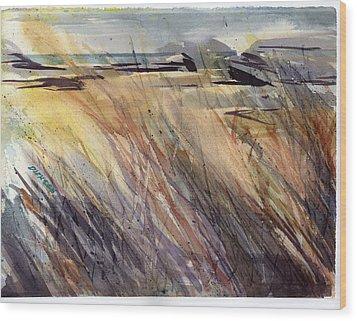 Dunescape Setting Wood Print