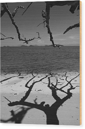 Dunk Island Australia 172 Wood Print by Per Lidvall