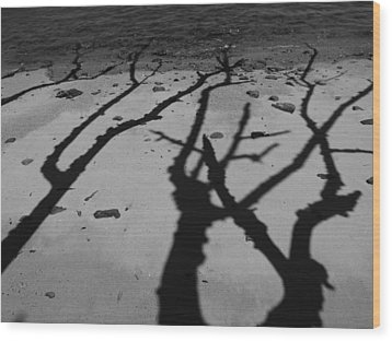Dunk Island Australia 174 Wood Print by Per Lidvall