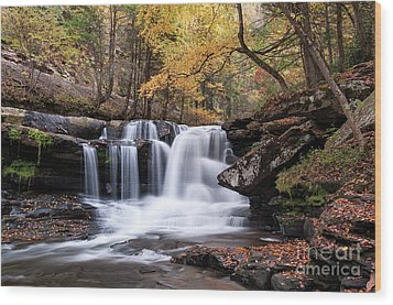 Wood Print featuring the photograph Dunloup Falls - D009961 by Daniel Dempster