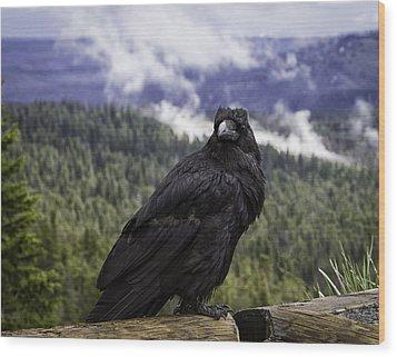 Dunraven Raven Wood Print