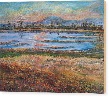 Dusk At Wildlife Refuge Wood Print by Sandra Longmore