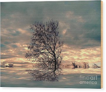 Wood Print featuring the photograph Dusk by Elfriede Fulda