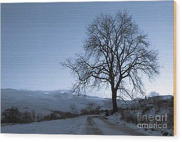 Dusk In Scottish Highlands Wood Print by David Bleeker