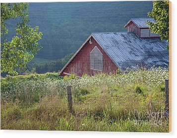 Wood Print featuring the photograph Dusk View by Susan Cole Kelly