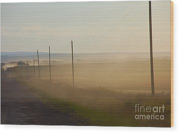 Wood Print featuring the photograph Dust Bowl by Elaine Manley