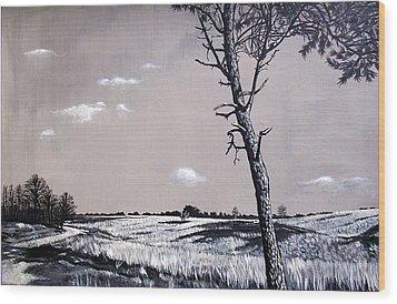 Dutch Heathland Wood Print by Arie Van der Wijst