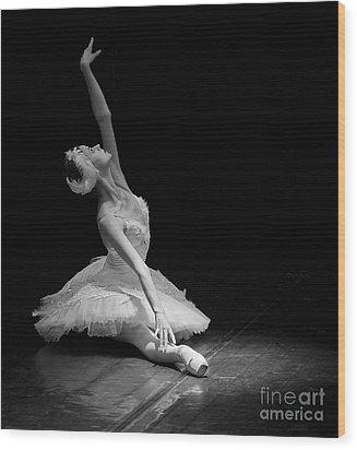 Dying Swan II. Wood Print