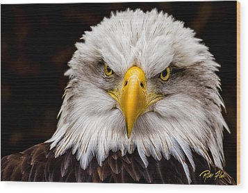 Defiant And Resolute - Bald Eagle Wood Print by Rikk Flohr