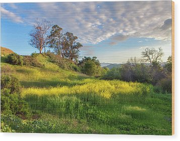 Eagle Grove At Lake Casitas In Ventura County, California Wood Print by John A Rodriguez