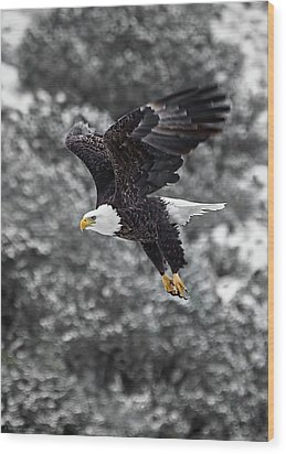 Wood Print featuring the photograph Eagle In Flight by Britt Runyon
