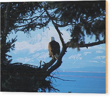 Eagle - Mt Baker - Eagles Nest Wood Print