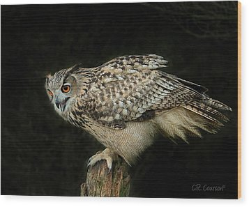 Eagle-owl Wood Print by CR Courson