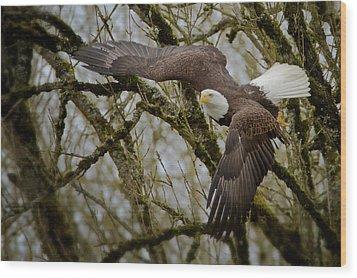 Eagle Take Off Wood Print