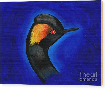 Eared Grebe Duck Wood Print