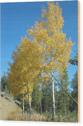 Wood Print featuring the photograph Early Autumn Aspens by Gary Baird