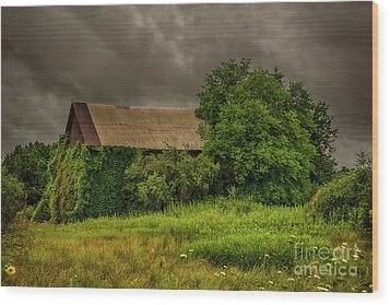 Early Monring Rain Wood Print by JRP Photography