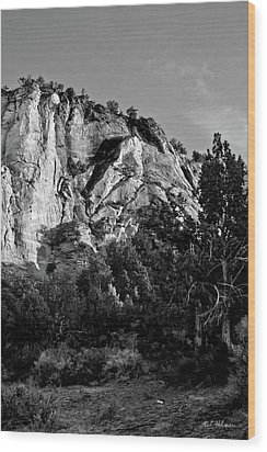 Early Morining Zion B-w Wood Print by Christopher Holmes