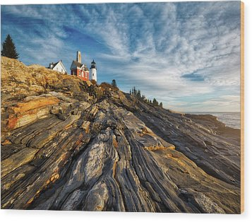 Early Morning At Pemaquid Point Wood Print by Darren White