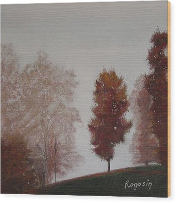 Early Morning Calm Wood Print by Harvey Rogosin