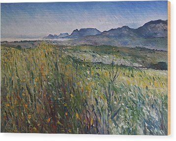 Early Morning Fog In The Foothills Of The Overberg Range Of Mountains Near Heidelberg South Africa. Wood Print by Enver Larney
