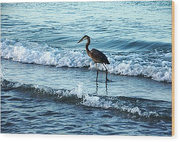 Early Morning Heron Beach Walk Wood Print