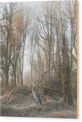 Wood Print featuring the photograph Early Morning In The Backwoods by Angie Vogel