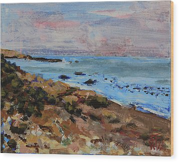 Wood Print featuring the painting Early Morning Low Tide by Walter Fahmy