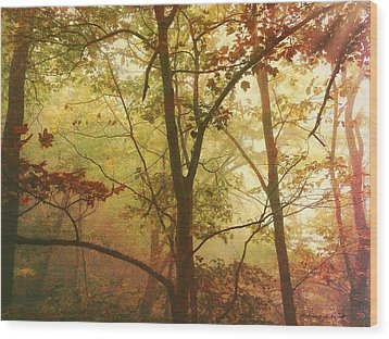 Wood Print featuring the photograph Early Morning Mist by Bellesouth Studio