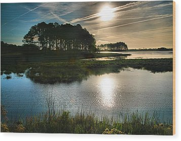 Early Morning On Beach Drive II Wood Print by Steven Ainsworth