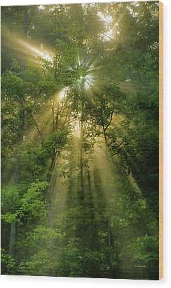 Early Morning Peace Wood Print by Christina Rollo