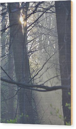 Early Morning Rays Wood Print by Bill Cannon