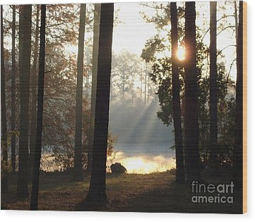 Early Morning Sun Rays On The Lake Wood Print by Cindy Hudson