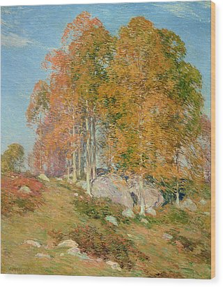 Early October Wood Print by Willard Leroy Metcalf