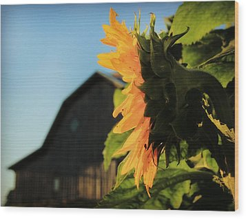 Wood Print featuring the photograph Early One Morning by Chris Berry