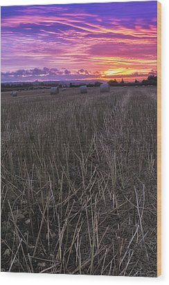 Wood Print featuring the photograph Early Rise  by Stewart Scott