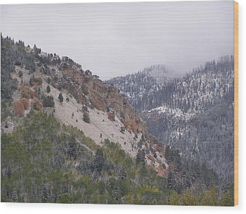 Wood Print featuring the photograph Early Snows by DeeLon Merritt