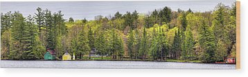 Early Spring Panorama Wood Print by David Patterson