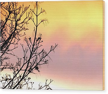 Wood Print featuring the photograph Early Spring Sunset by Will Borden