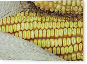 Ears Of Corn #2 Wood Print